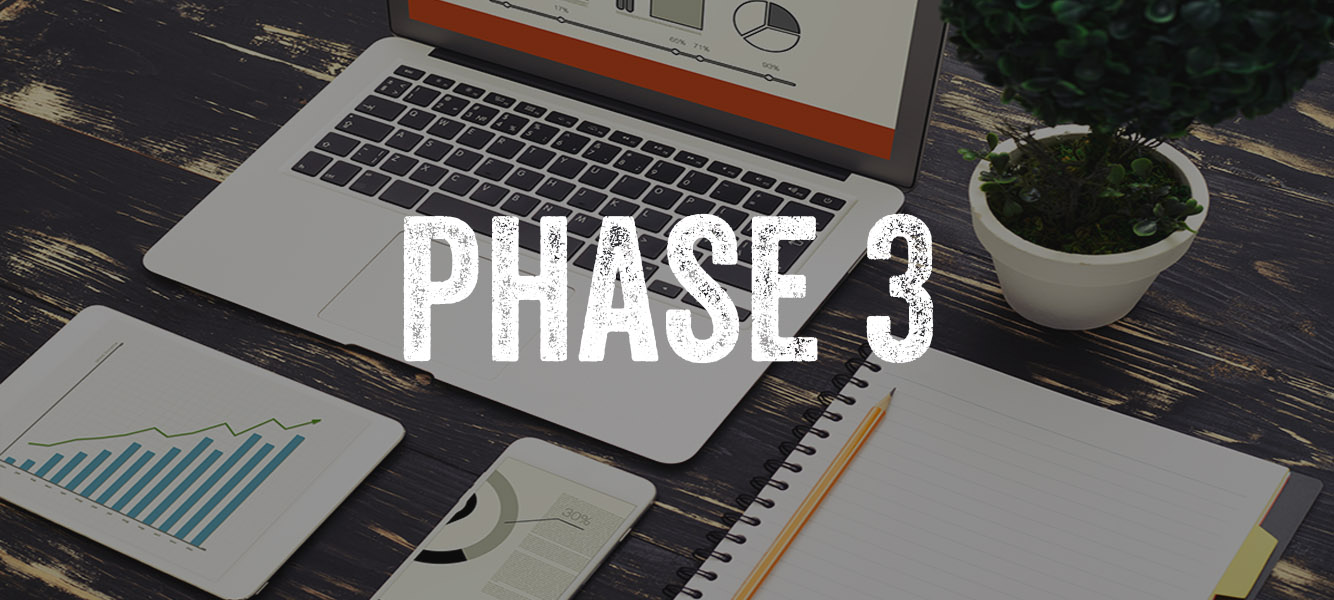 Phase 3: Action & Results Goal: All the hard work begins to make a serious impact. In Phase 3 both self-implementing clients and clients who choose VPS team execution experience the transformation, in real-time as your changes Go Live!